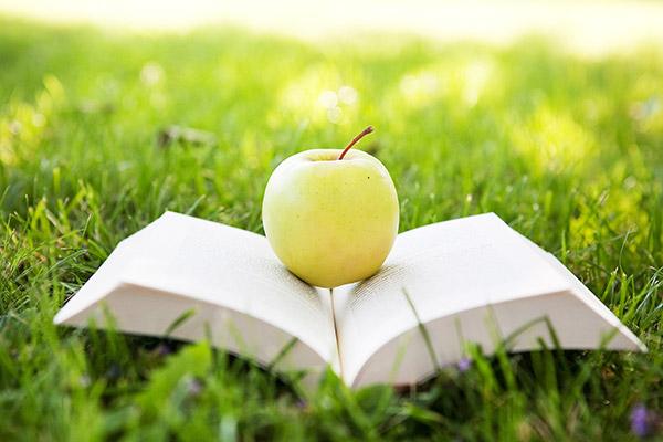 Crónica del curso de verano, por Claudia Sofía Melo