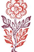 lyra minima logo